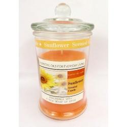 Candela profumata oli essenziali arancio